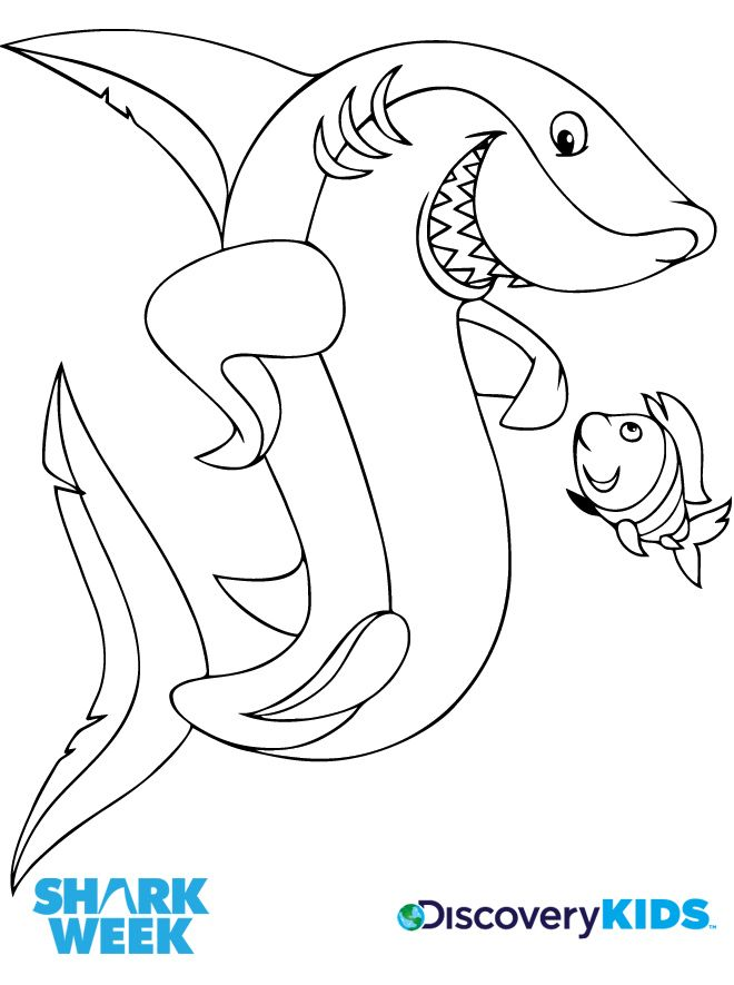 shark-coloring-page-0019-q1