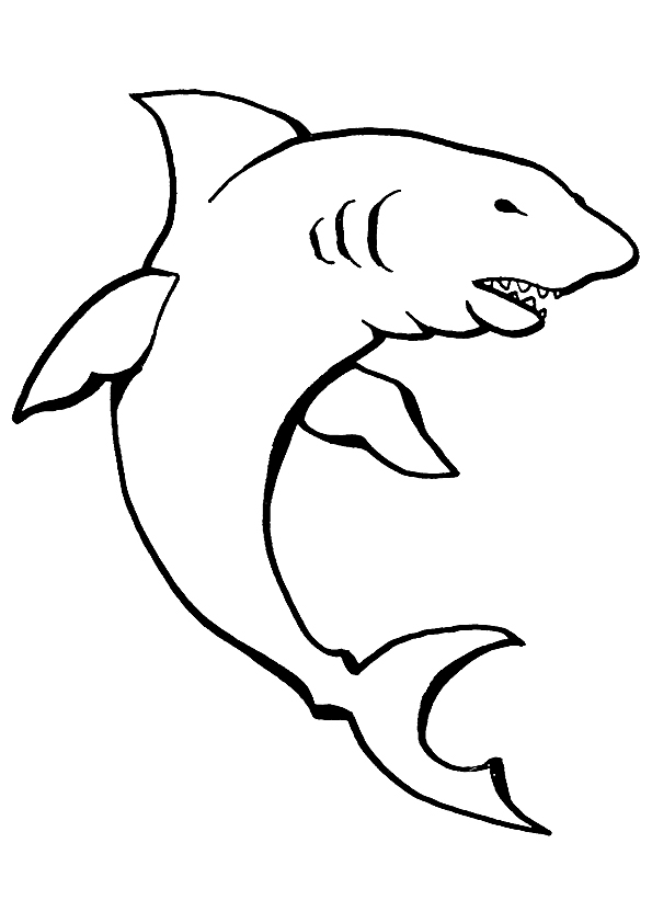 shark-coloring-page-0021-q2