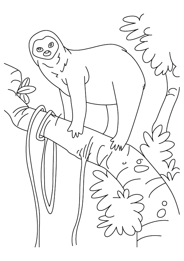 sloth-coloring-page-0007-q2