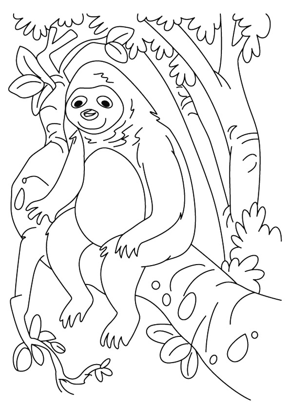 sloth-coloring-page-0012-q2