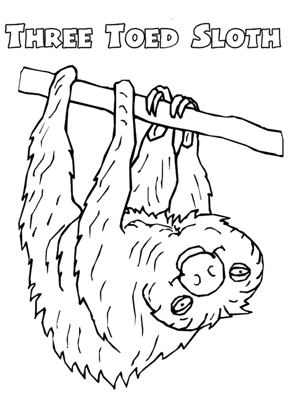 sloth-coloring-page-0014-q2