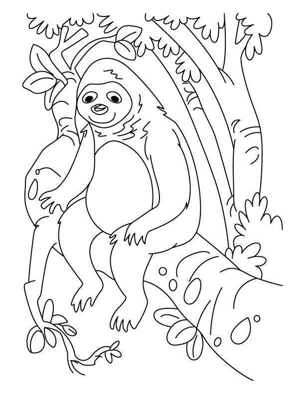 sloth-coloring-page-0019-q1
