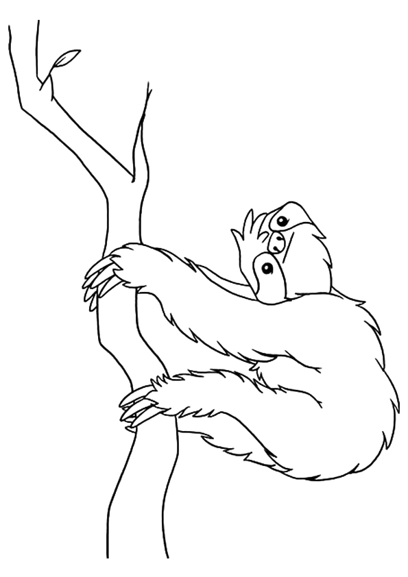sloth-coloring-page-0020-q2
