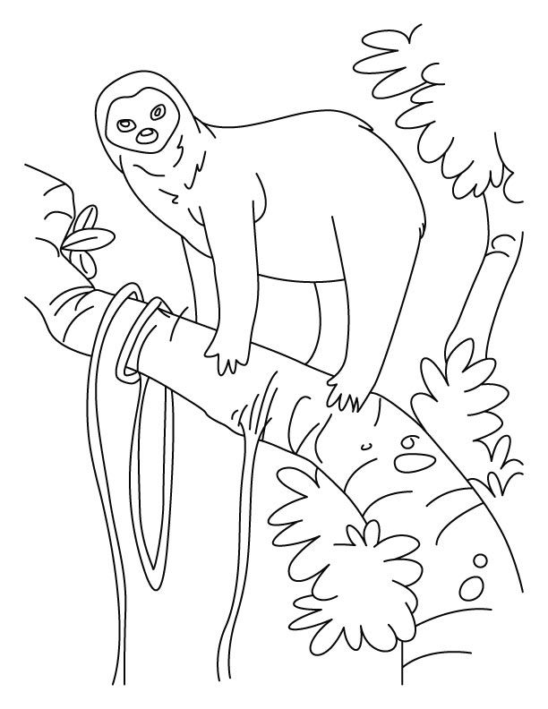 sloth-coloring-page-0024-q1