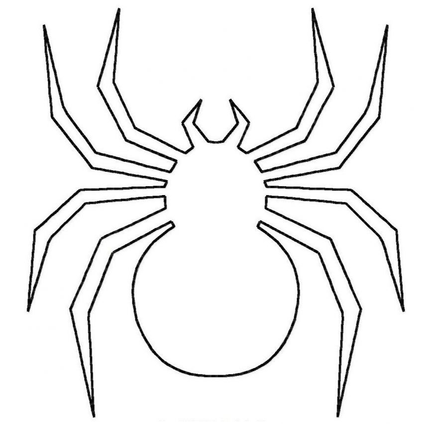 spider-coloring-page-0020-q1