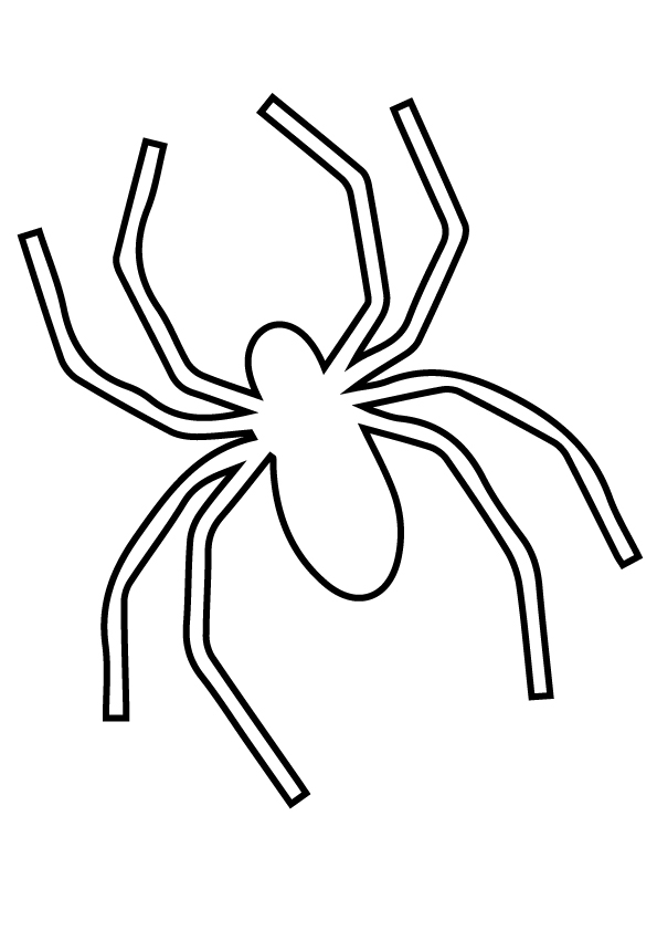 spider-coloring-page-0032-q2