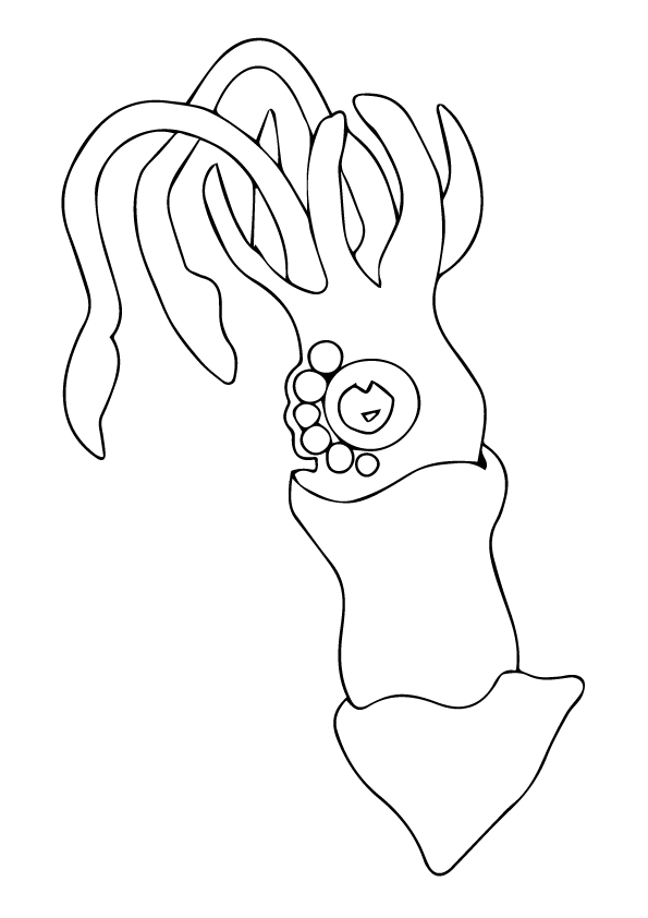 squid-coloring-page-0022-q2