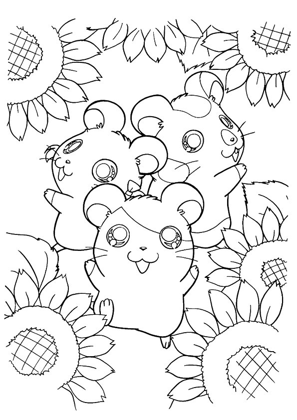 sunflower-coloring-page-0007-q2