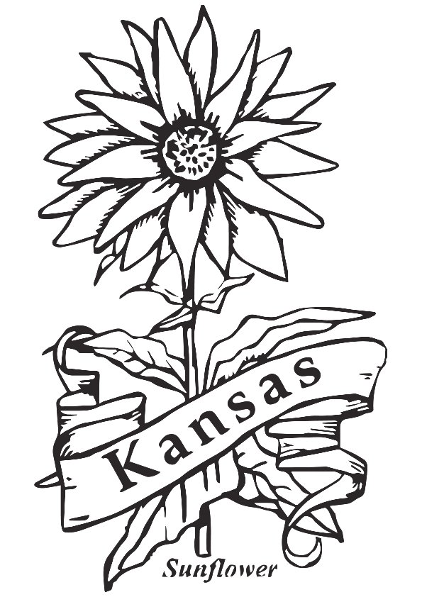 sunflower-coloring-page-0011-q2