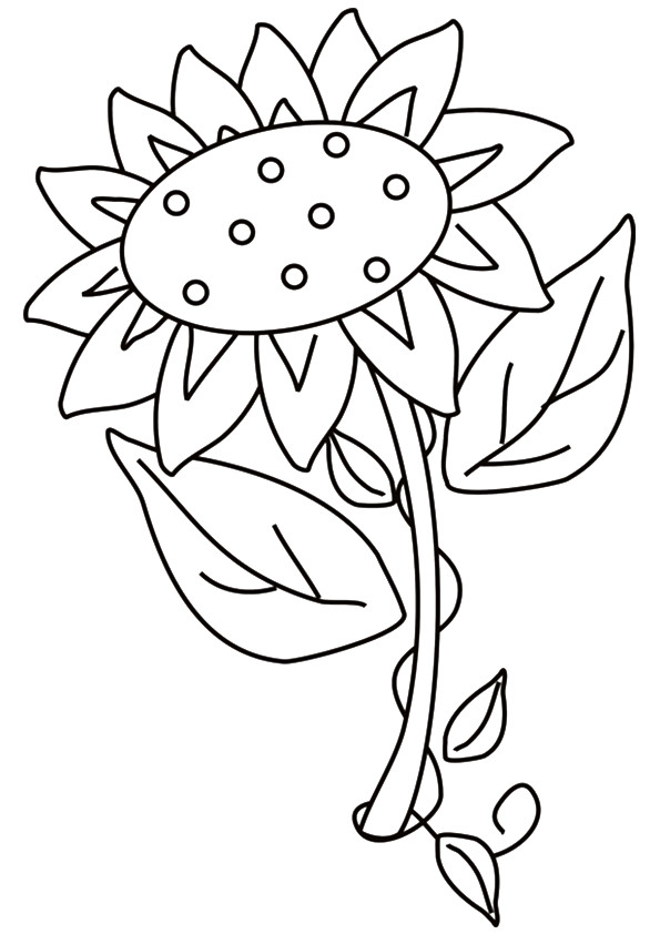 sunflower-coloring-page-0017-q2