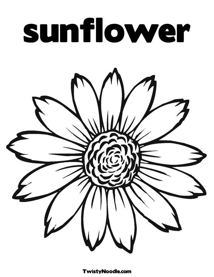 sunflower-coloring-page-0019-q1