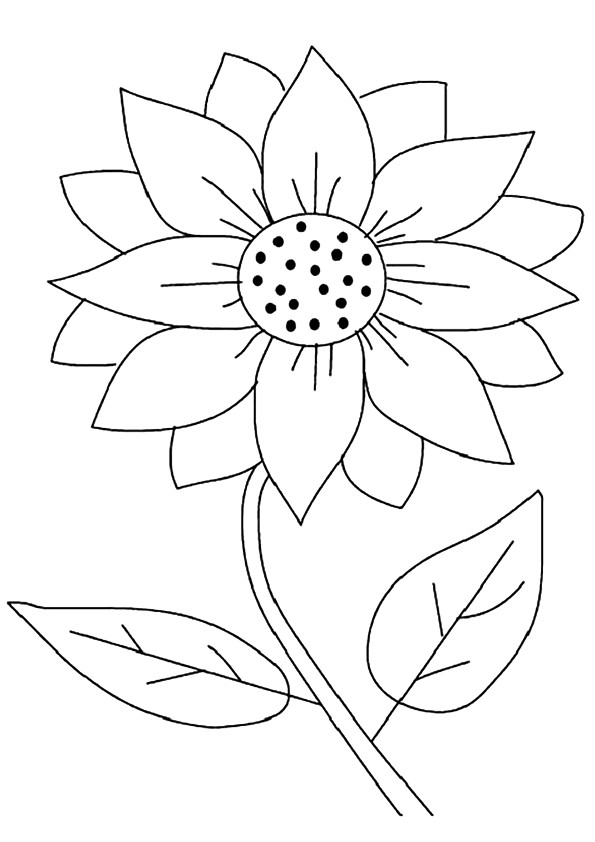 sunflower-coloring-page-0026-q2