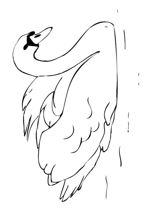 swan-coloring-page-0004-q2