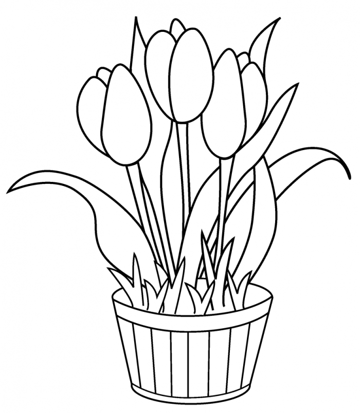 tulip-coloring-page-0002-q1