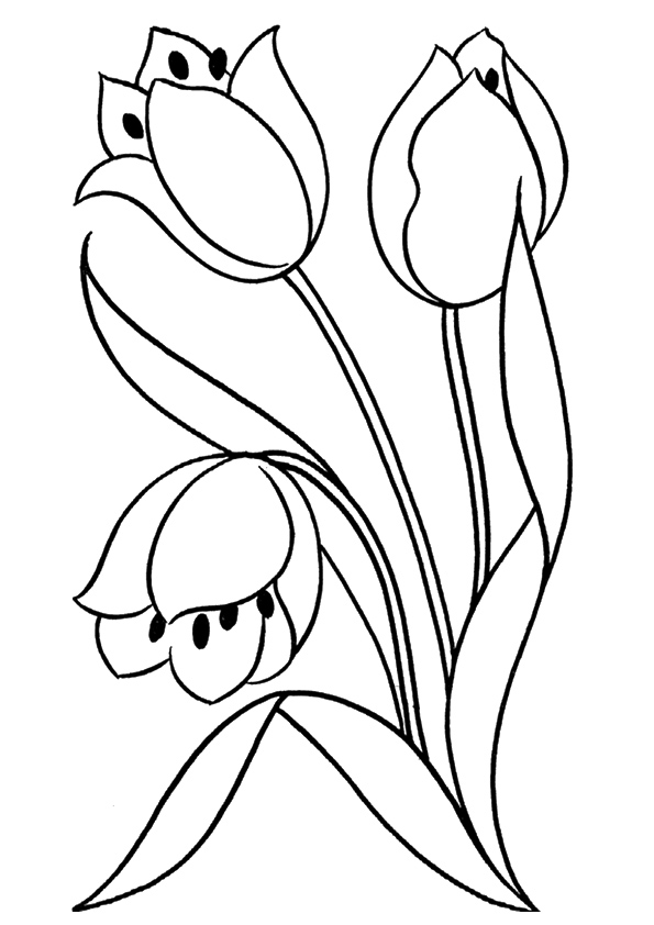tulip-coloring-page-0005-q2