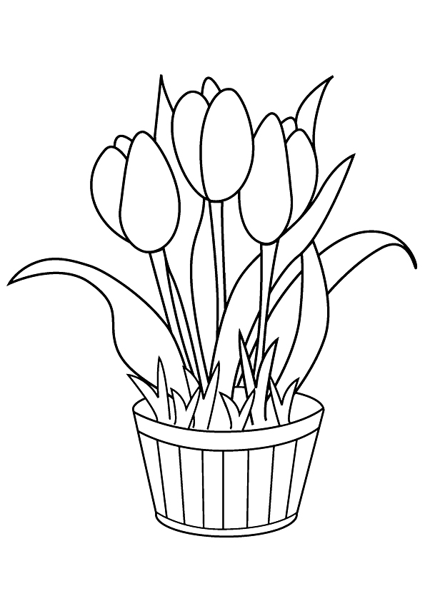 tulip-coloring-page-0006-q2