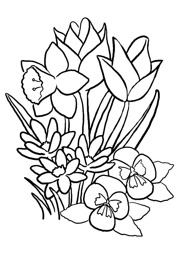 tulip-coloring-page-0007-q2