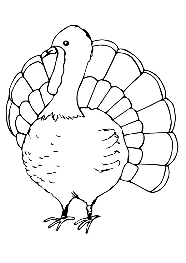 turkey-coloring-page-0028-q2