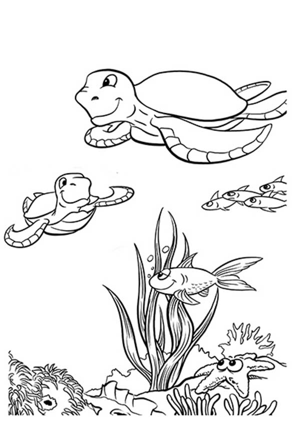 under-the-sea-and-underwater-coloring-page-0019-q2