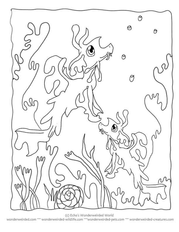 under-the-sea-and-underwater-coloring-page-0022-q1