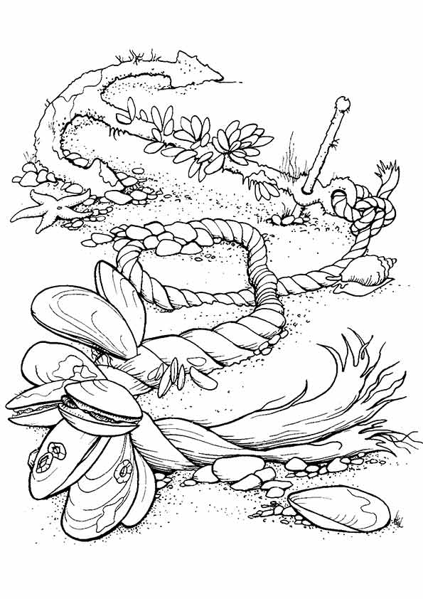 under-the-sea-and-underwater-coloring-page-0030-q2