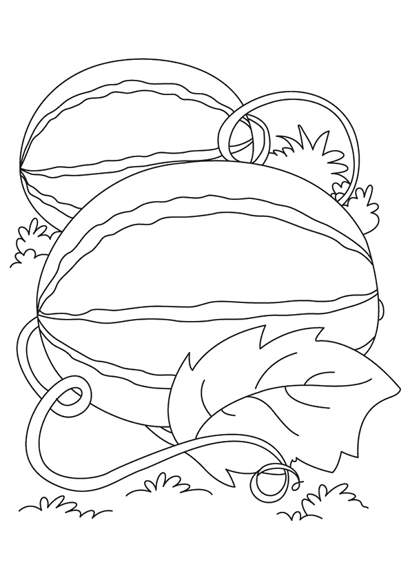 watermelon-coloring-page-0002-q2