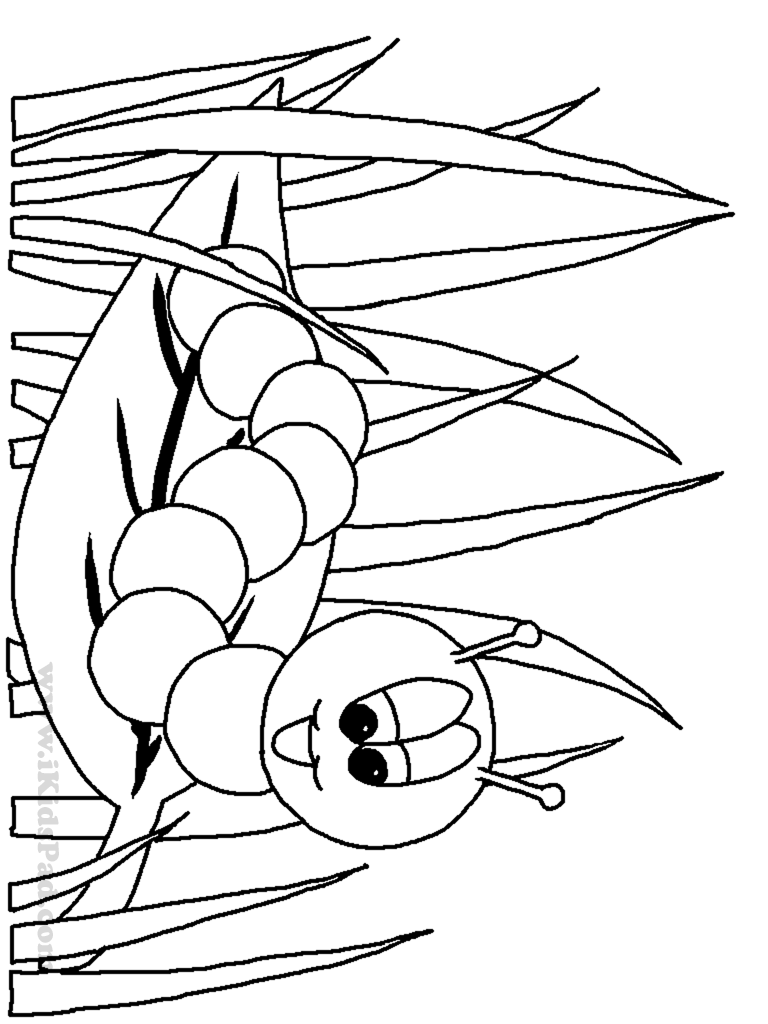 worm-coloring-page-0016-q1