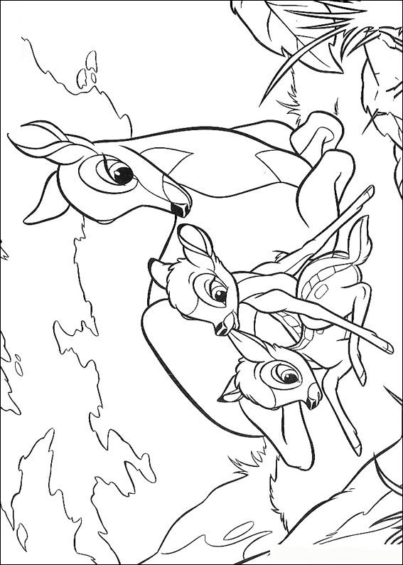 bambi-coloring-page-0028-q5