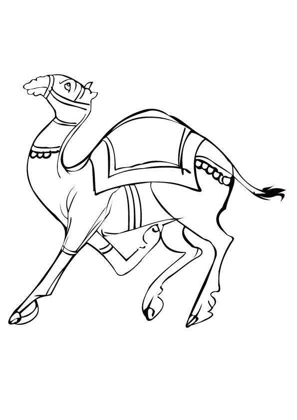 camel-coloring-page-0006-q2