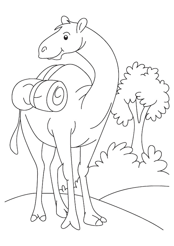 camel-coloring-page-0017-q2