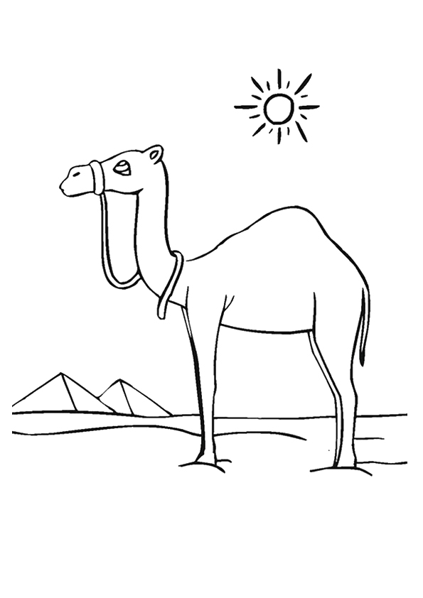 camel-coloring-page-0027-q2