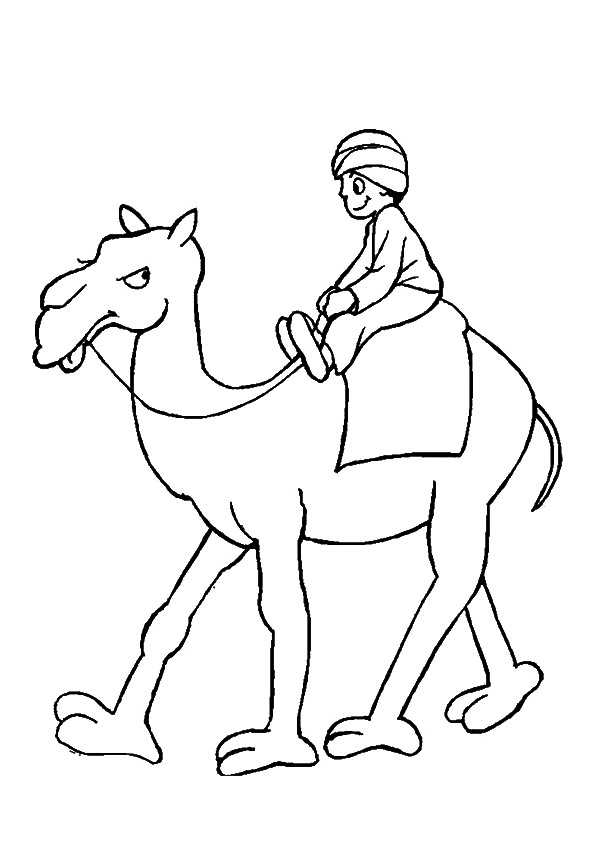 camel-coloring-page-0032-q2