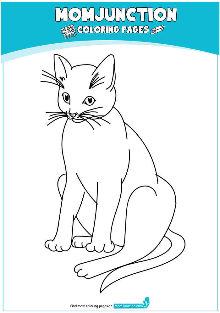 cat-coloring-page-0007-q2