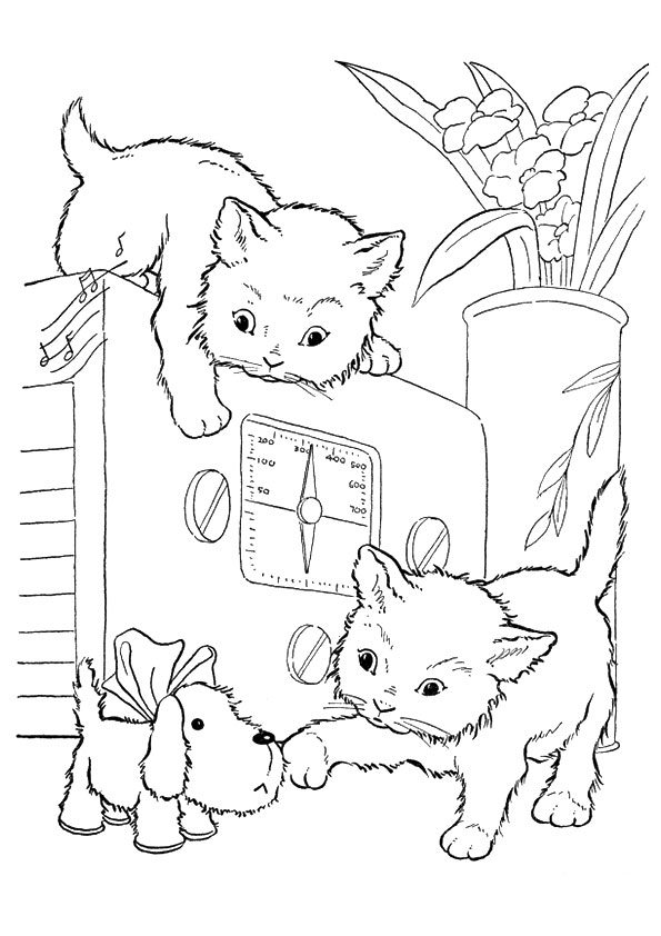 cat-coloring-page-0011-q2