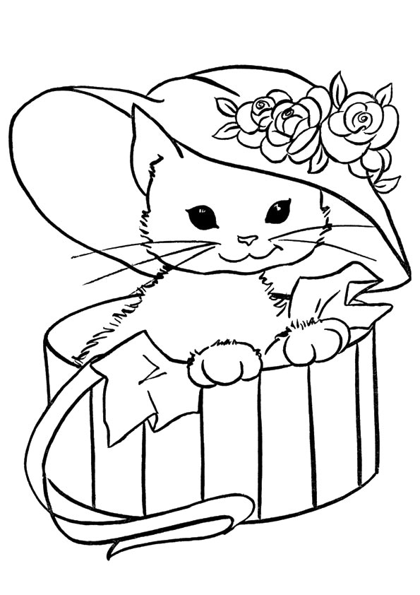 cat-coloring-page-0024-q2