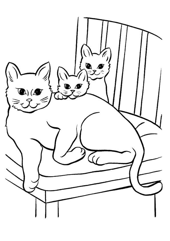 cat-coloring-page-0026-q2