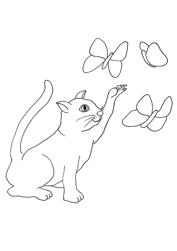 cat-coloring-page-0030-q2