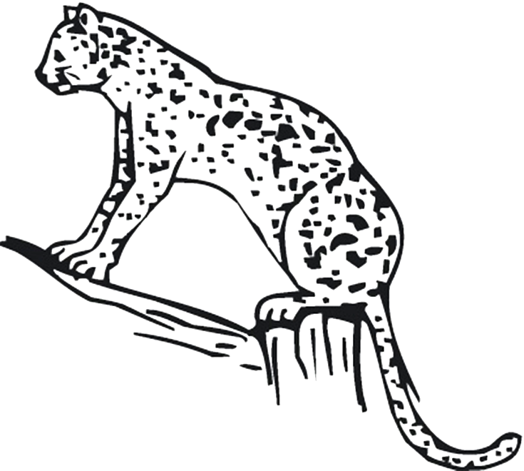 cheetah-coloring-page-0002-q1