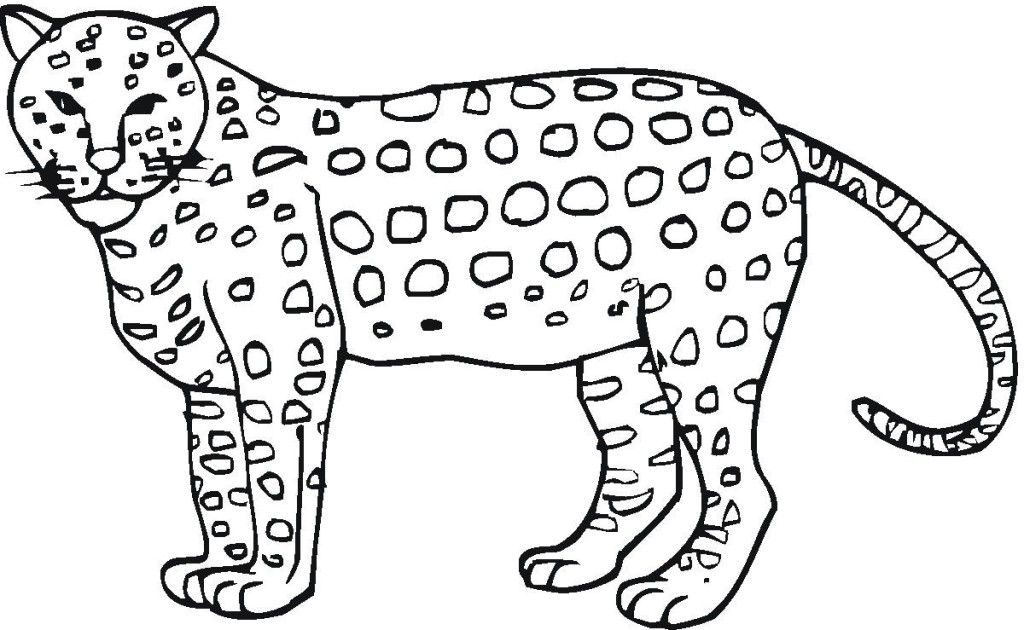cheetah-coloring-page-0007-q1
