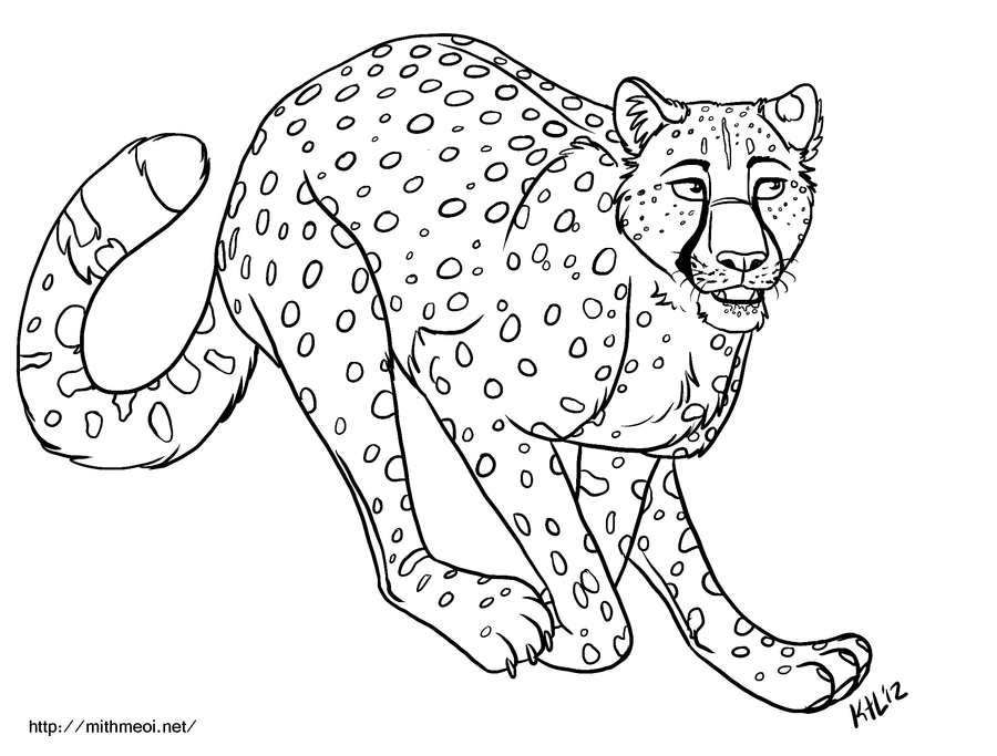 cheetah-coloring-page-0008-q1