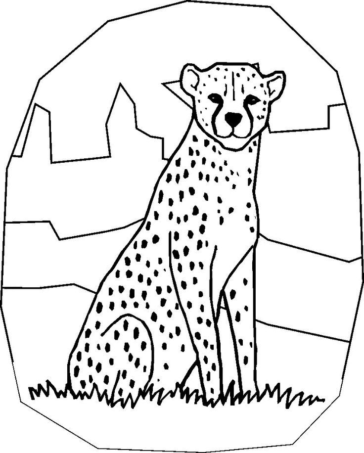 cheetah-coloring-page-0017-q1
