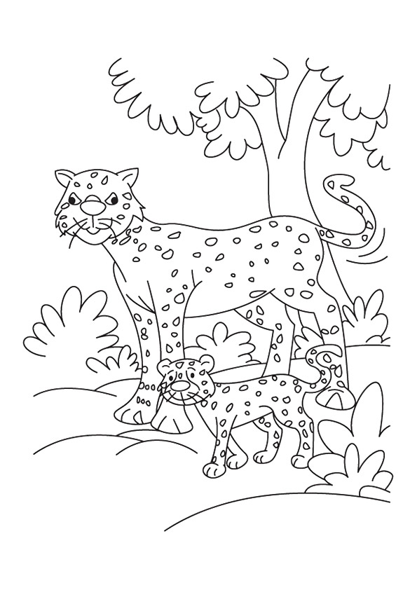 cheetah-coloring-page-0018-q2