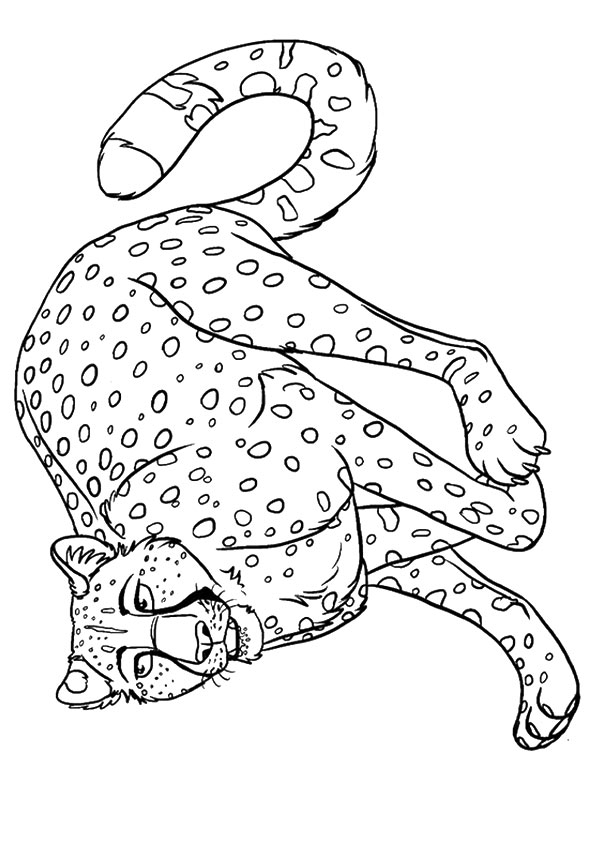 cheetah-coloring-page-0019-q2
