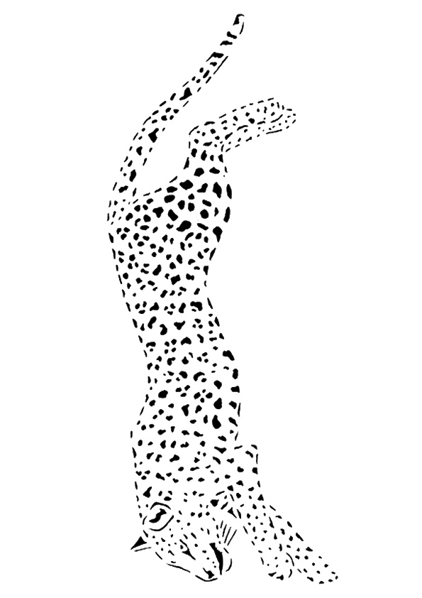 cheetah-coloring-page-0032-q2