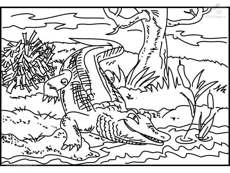 crocodile-coloring-page-0002-q1