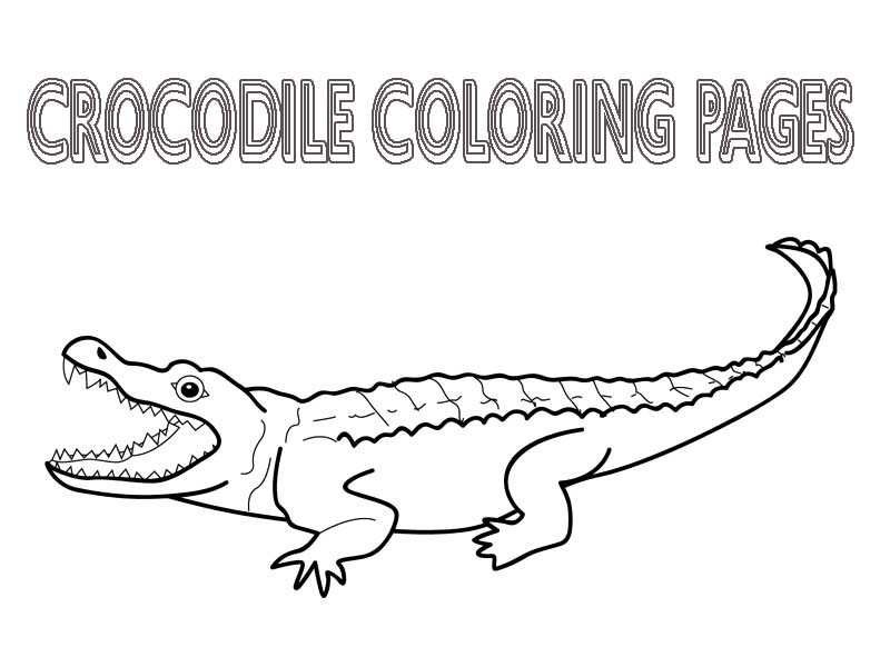 crocodile-coloring-page-0007-q1