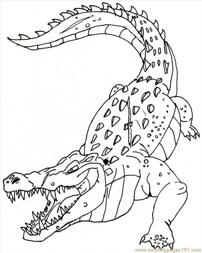 crocodile-coloring-page-0013-q1