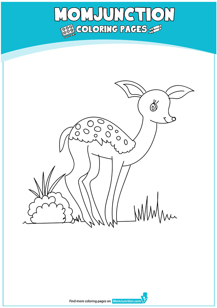 deer-coloring-page-0008-q2