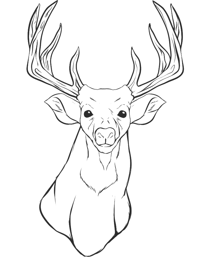 deer-coloring-page-0009-q1