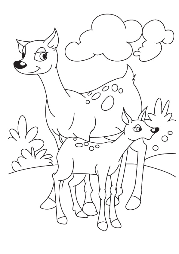 deer-coloring-page-0017-q2